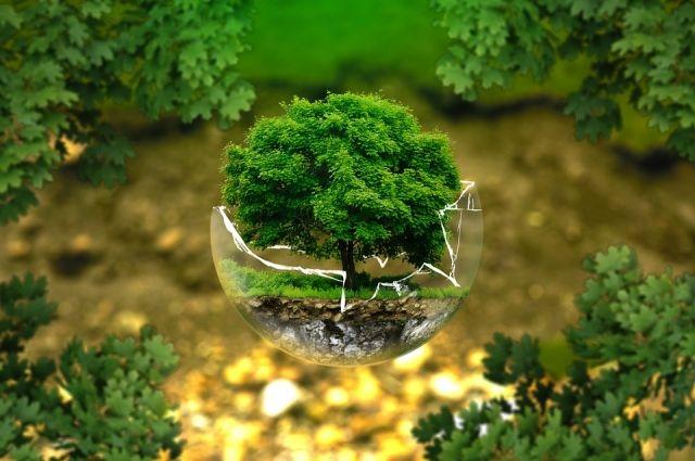 Важная задача - сохранить окружающую среду для будущих поколений.