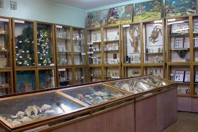 Музеи Пензы способны удивлять своими экспонатами.