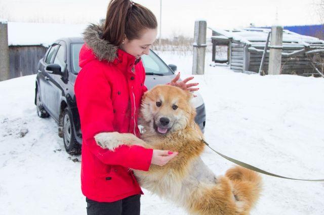 Татьяна, друг Хати: «Вы только посмотрите на него! Этот рыжий медвежонок любого развеселит».
