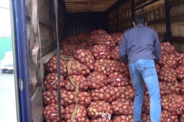 Тюменского предпринимателя оштрафовали, однако паразитов влуке ненашли