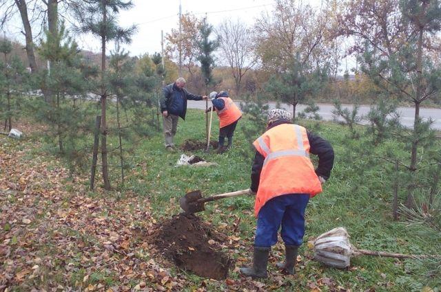 ВКазани наместе Самосыровской свалки появится холм сзелеными насаждениями