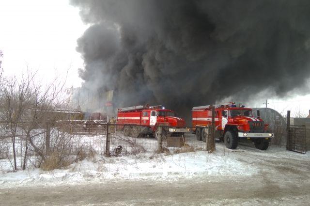 В РФ зафиксирован 1-ый в нынешнем 2017-ом лесной пожар