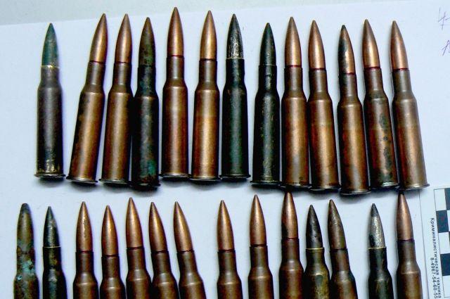 Гражданин Починка отыскал вболоте пригодное для стрельбы оружие времен войны