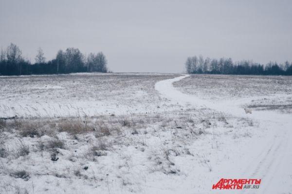 Смоленская область осталась без средств федерального бюджета
