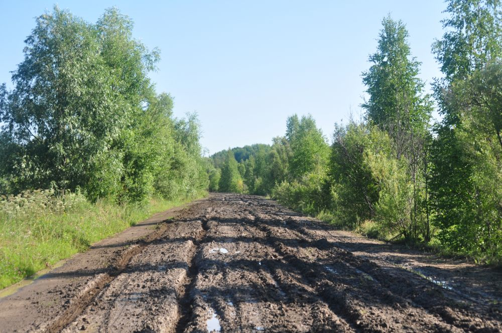 Омская область, 464015,9 тыс. рублей - этот объём выделенных средств выше, чем в других регионах Сибирского федерального округа.
