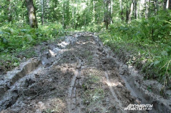 Кемеровская область - этому региону средства на строительство дорог решили не выделять.