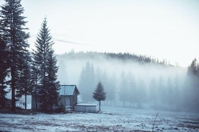 Змерзающий туман увидят граждане Смоленской области 28января— МЧС