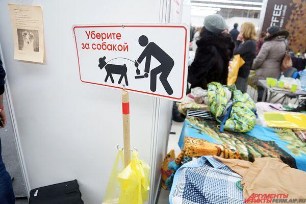 Отдельные стенды посвящены бездомным собакам.