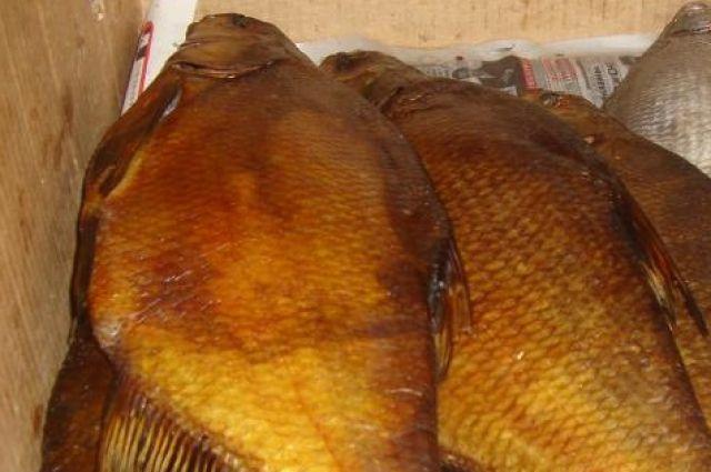 В 2017 году на Дону могут запретить вылов некоторых видов рыбы.