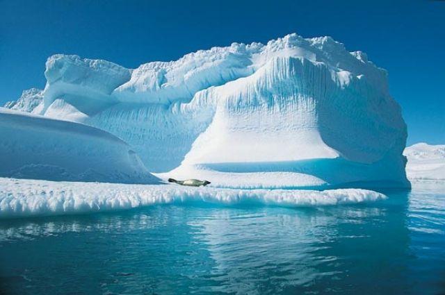 Ученые: Арктика может остаться без льдов летом 2040 года