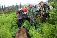 Если раньше от браконьеров животных пытались избавить сотрудники заповедника, то сейчас этим будет заниматься новый хозяин.