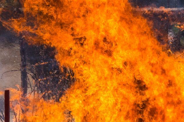 ВПензе наулице Революционной в помещении СТО случился пожар