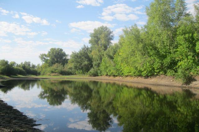 Спасение жемчужины Волгоградской области - Волго-Ахтубинской поймы - это общая задача власти и экологов.