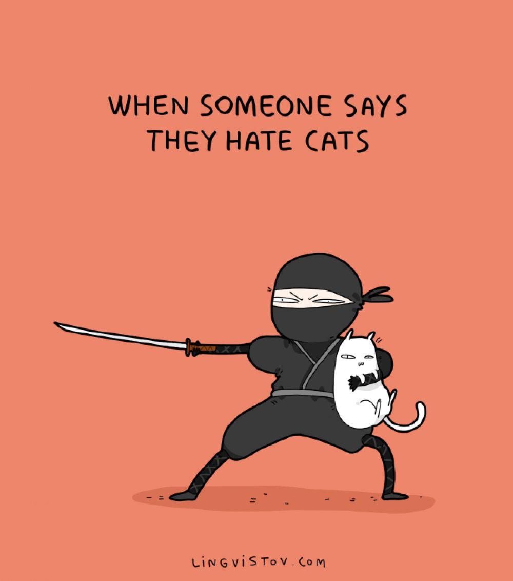 «Когда кто-то говорит,  что ненавидит кошек»