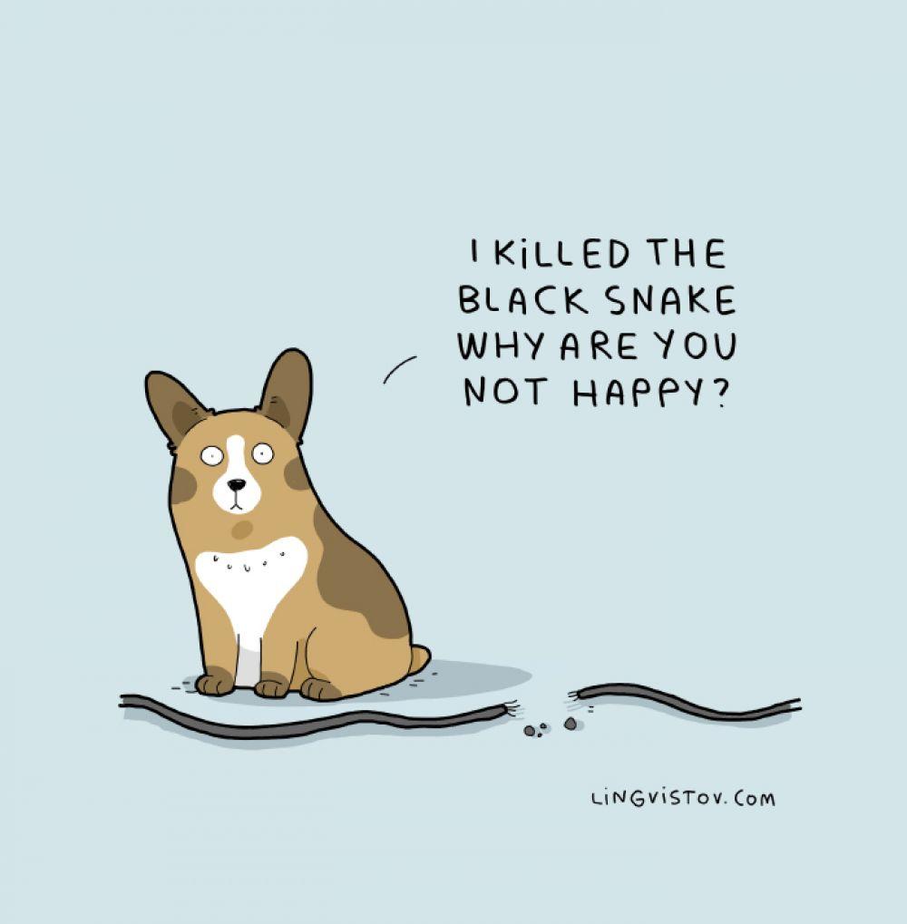 «Я убил черную змею. Почему ты не рад?»