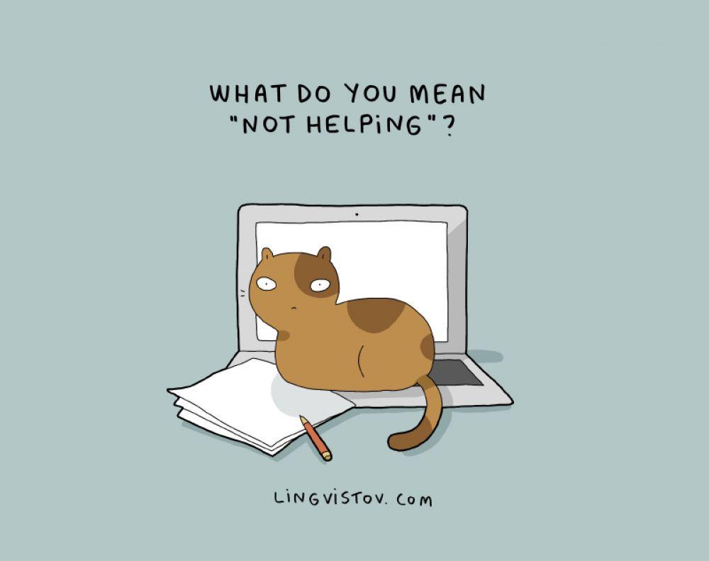 «Что значит «не помогаю»?»