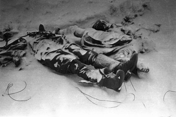 Убитые на поле боя под Сталинградом.
