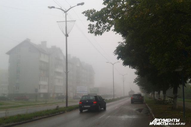 Автомобилистов Калининградской области предупредили о туманах на дорогах.