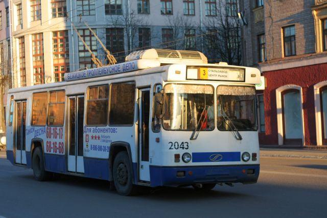 ВБрянске две пенсионерки упали втроллейбусе иполучили травмы