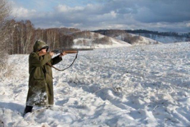 ВХМАО пойманы браконьеры, ихжертвами стали соболи, лоси имедведь