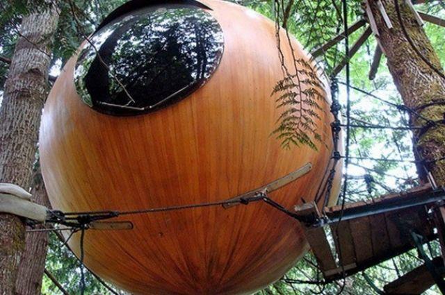 Номера-капсулы на деревьях на острове Ванкувер (Канада)