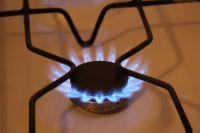 Компания поставляет природный газ 234,5-м тысячам абонентов Омской области и 1558-ти производственным потребителям.