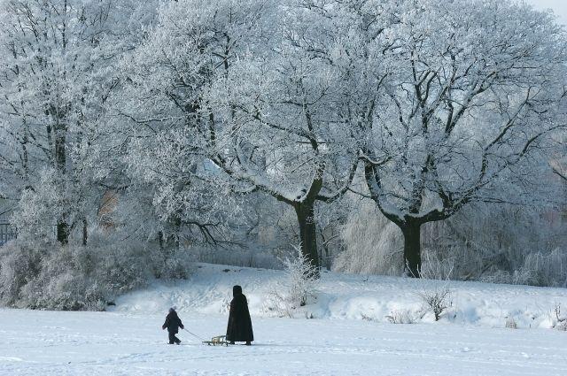 Аномальные морозы возвращаются вНижегородскую область
