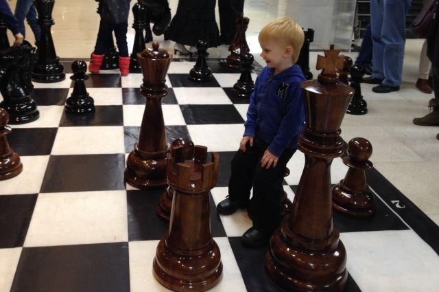 Шахматные столы установят водворах Иркутска