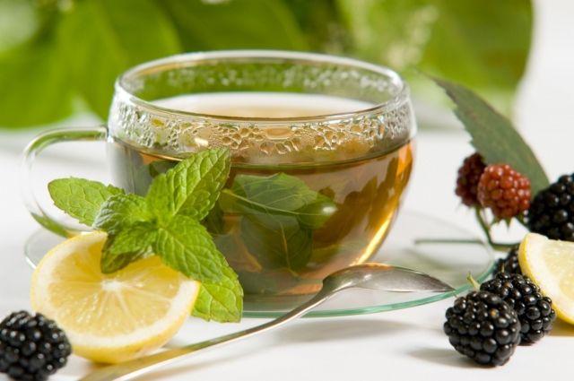 Зеленый чай может излечить заболевания костного мозга, - ученые