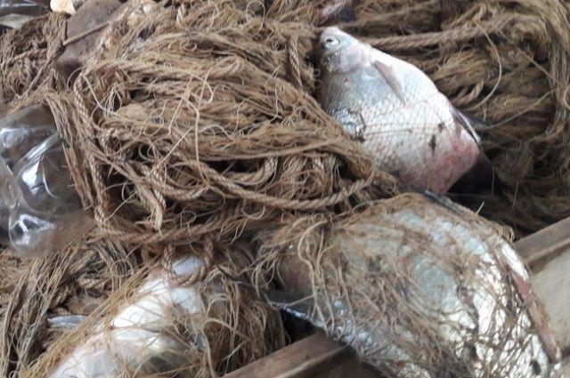 Двоих браконьеров будут судить за преступную рыбалку вГородецком районе