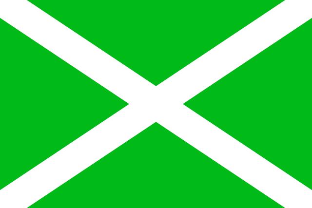 Флаг Федеральной налоговой службы РФ.