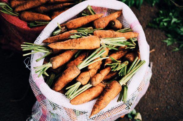 Морковь. А также сельдерей и другие жесткие овощи, которые нужно тщательно жевать.