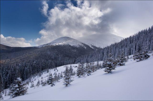 Спасатели нашли двух туристов, которые заблудились в горах во Львовской области