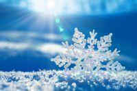 Из-за сильных морозов власти Сумской области приняли решение приостановить обучение в школах