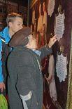 Посетители могли увидеть самое большое генеалогическое древо семьи Романовых, которое в донской столице было представлено впервые.