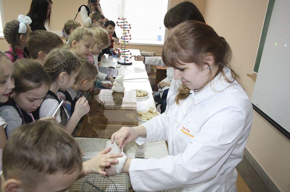 Студенты познакомили ребят с самыми популярными лабораторными животными.