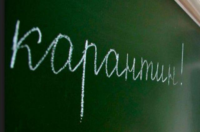 ВЧувашии из-за гриппа объявлен карантин вшколах