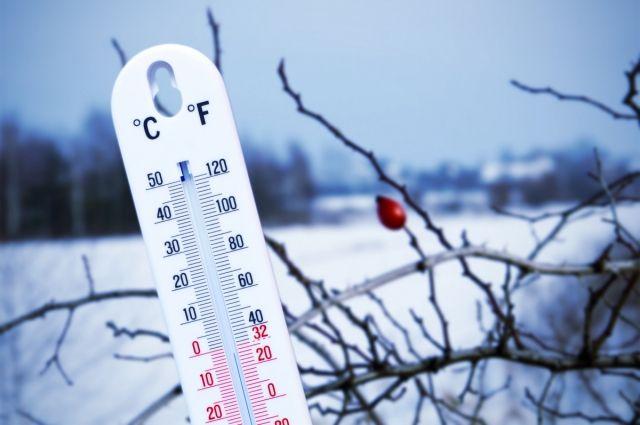 Рабочая неделя будет морозной, но без осадков.