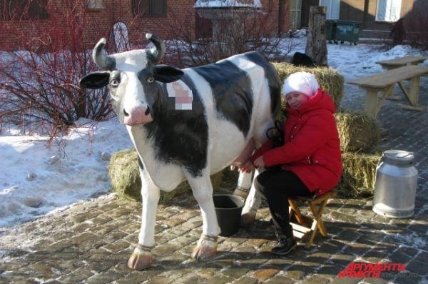 Фото с коровой на память о празднике.