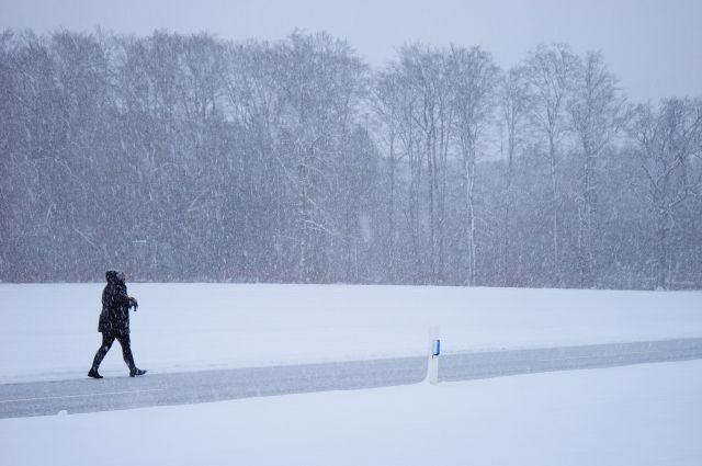 В западном Оренбуржье в День святого Валентина будет сильный ветер