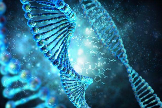 Ученые изсоедененных штатов планируют корректировать геномы эмбрионов