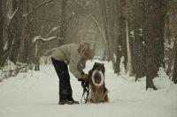 Собаководам находят места для выгула в парках.