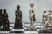 Покрыть свою задолженность шахматами мужчине пришлось по причине бесконечного прессинга со стороны приставов и бывшей супруги.