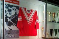 Созданный ефремовцем музей - желание гордиться спортивными победами земляков и вновь побеждать.