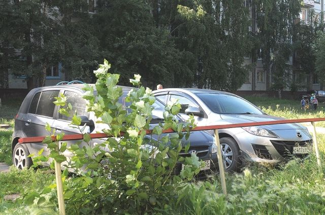 ВЗакСе Петербурга порекомендовали автоматизировать штрафы запарковку нагазонах