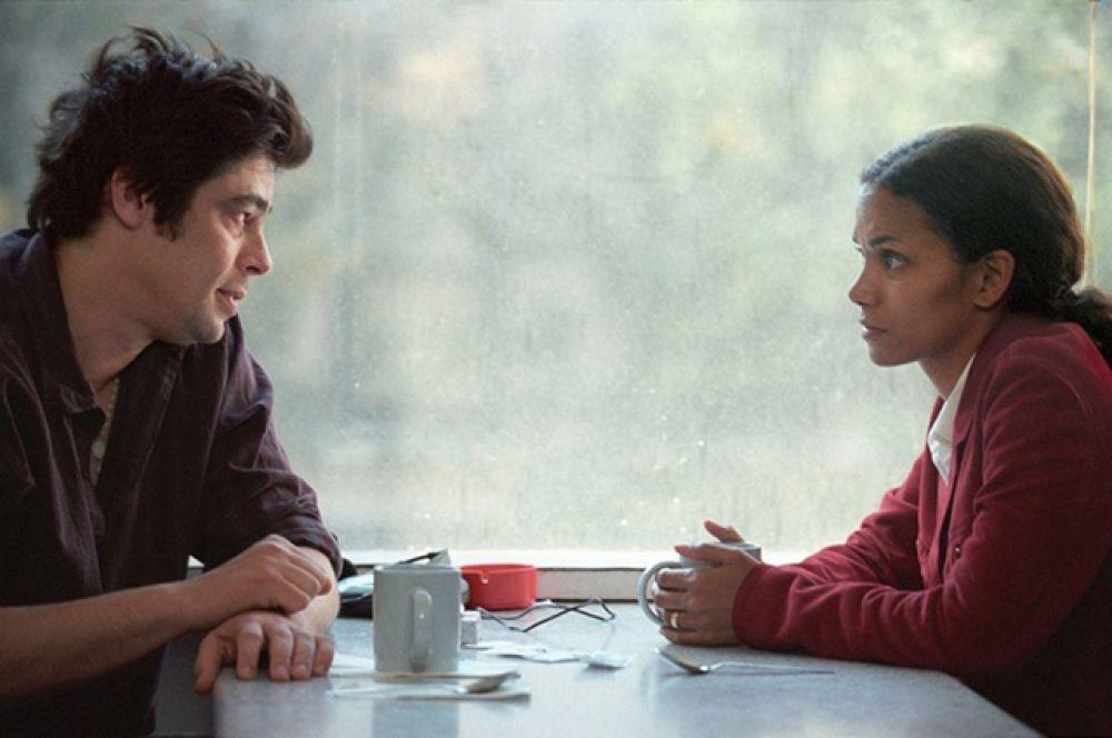 В 2007 году Дель Торо вместе с Холли Берри принял участие в съёмках драмы «То, что мы потеряли».