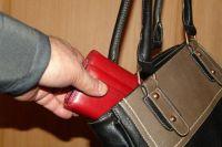 Пока женщина была на кухне, злоумышленник достал из ее сумки кошелек.