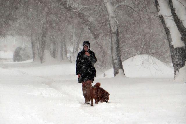 МЧС предупреждает обухудшении погоды в столице России
