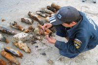 Более 100 снарядов времен ВОВ обнаружили на Куршской косе.