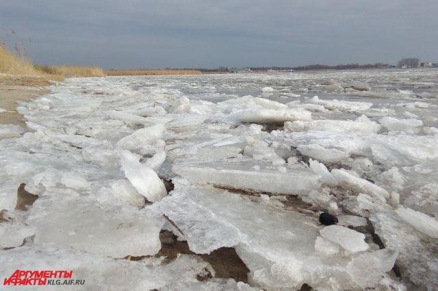 Спасатели запретили выход на лед на реке Преголя и в Калининградском заливе.